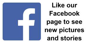 TARANGO - Facebook Symbol